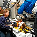 Online EMS training covering topics like pediatrics, trauma and more